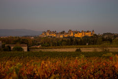 Cacassonne wine yard in a dusk. Photograph of strenght and wine yard ,Carcassonne, France Royalty Free Stock Images