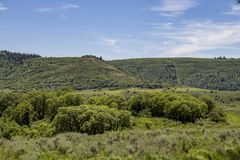 Wales Canyon. Photograph taken in Wales Canyon, Sanpete County, Utah stock image