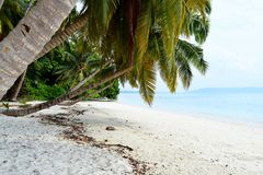 White Sandy Beach with Azure Water with Palm Trees and Greenery - Vijaynagar, Havelock, Andaman Nicobar, India. This is a photograph of a tranquil white sandy royalty free stock photo