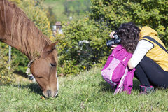 Photograph woman shooting a beautiful  red wild horse Royalty Free Stock Photos