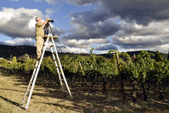 Photographe adulte de passe-temps d'homme photo stock