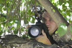 Photographe Behind Tree de paparazzi photographie stock
