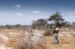 Photographe dans la savane #2 Photographie stock libre de droits
