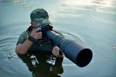 Photographe de faune extérieur, position dans l'eau Photo libre de droits