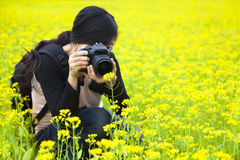 Photographe de femme prenant des photos en nature Photos stock