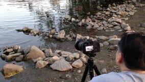 Photographe prenant la photo du canard Photographie stock libre de droits