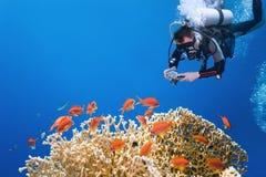 Photographe sur le récif coralien Photographie stock