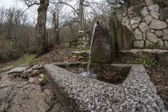 Water fountain, made of granite, inside an oak forest. Photographed with wide angle Stock Photo