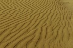 Gorgeous wind markings on the sand close up natural pure dunes at Sampieri beach in Sicily in a summer sunny windy day. Photographed wind carvings made by the stock images