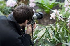 Photographer. Orchid Photographer royalty free stock photography
