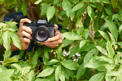 Photographer in bushes Royalty Free Stock Photo