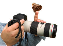 Photographer and butterfly Royalty Free Stock Photography