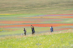 Photographer in Castelluccio Stock Images