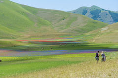 Photographer in Castelluccio Stock Image