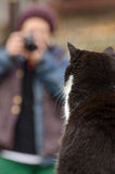 Photographer and cat Royalty Free Stock Image