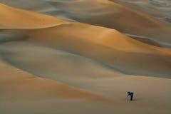 Photographer in desert royalty free stock image