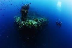 Photographer diver scuba take a photo or video near reef ocean. Royalty Free Stock Photo