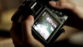 A photographer examines the photo in the camera. The photographer examines the picture in the camera, selects the best shots from the photo shoot stock footage