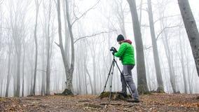 Photographer in foggy forest. Dark scary forest like a fairy tale Stock Photos