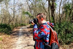 Photographer in the forest photographing the natural environment. Photographer in the forest. Guys in nature photography forest environment, enjoying the Royalty Free Stock Image
