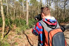 Photographer in the forest photographing the natural environment. Photographer in the forest. Guys in nature photography forest environment, enjoying the Stock Photos