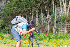 Photographer in garden Royalty Free Stock Photography