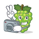 Photographer green grapes mascot cartoon. Vector illustration Royalty Free Stock Photos
