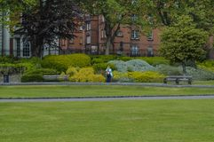 Photographer in green park. Royalty Free Stock Photos