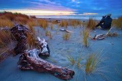 Photographer on hokitika beach ,south island new zealand Stock Photo