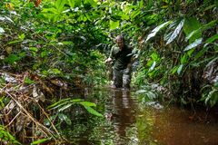 The photographer in the jungle goes through a bog. Stock Photos