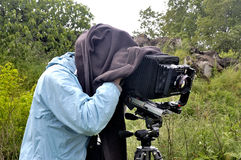 Photographer in nature Stock Image