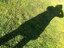 The photographer's shadow. On the green grass Stock Images