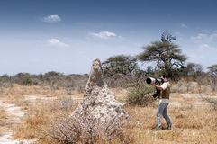 Photographer in the savannah #2 Royalty Free Stock Photography