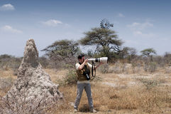 Photographer in the savannah - profile Stock Photos