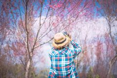 Photographer shooting in the forest with nature beautiful. Background Stock Images