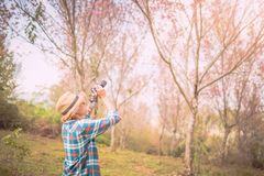 Photographer shooting in the forest with nature. Beautiful background Royalty Free Stock Photography