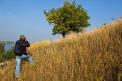 Photographer shooting a green tree Royalty Free Stock Photos