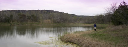 A Photographer Shoots Cattail Pond, Cedar Ridge Preserve Stock Photo