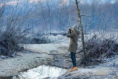 Photographer shoots winter forest Stock Photos