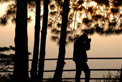 Photographer silhouette royalty free stock photography