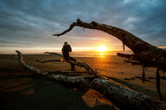Photographer and sun set on black beach hokitika south island ne Stock Image