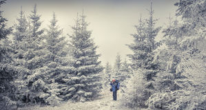 Photographer takes a photo in the winter woods. Royalty Free Stock Photos