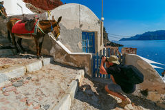 Photographer takes pictures donkey, Oia, Santorini. Photographer traveler takes pictures donkey in Old port Amoudi of Oia village at Santorini island in Aegean Royalty Free Stock Photo