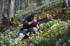 Photographer takes pictures with snowdrops. Photographer takes pictures with snowdrops Stock Images