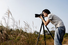 Photographer taking photo Royalty Free Stock Image