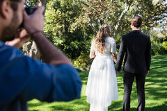 Photographer taking photo of newly married couple. In park royalty free stock image
