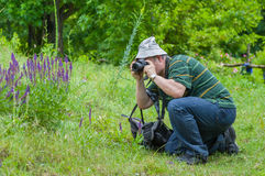 Photographer taking a photo of wild butterfly. Enthusiastic mature photographer taking a photo of wild butterfly Royalty Free Stock Images