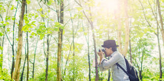 Photographer taking photos in a green forest. With Film camera wearing black hat Royalty Free Stock Image