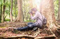 Photographer taking photos sitting under a big tree. Using SLR camera in natural outdoor, vintage look Royalty Free Stock Photos
