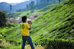 A photographer tea plantation in Cameron Highland. Malaysia Royalty Free Stock Image